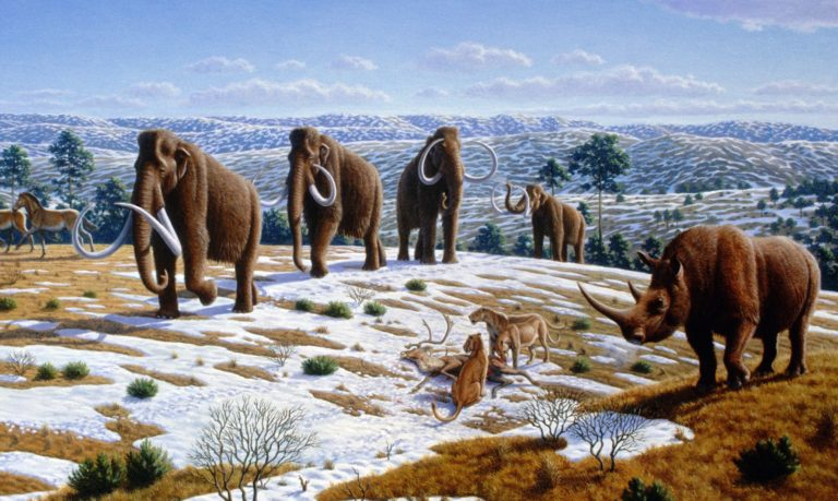 Ice Age Late Night at the Rutgers Geology Museum: March 7