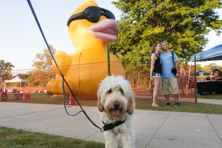 39th Raritan River Festival and Rubber Duck Race: Sept 30